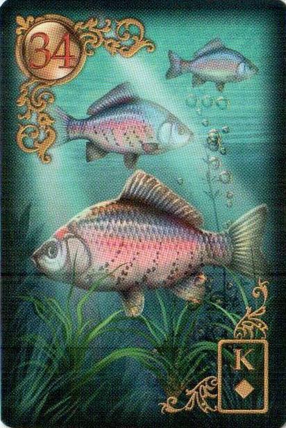 Рыбы, предельно самоуверенные люди, охотно выдвигают себя на передний план, а также чрезвычайно активны и любят путешествовать.
